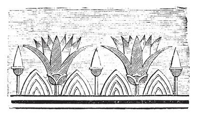 Lotus flowers, vintage engraving.