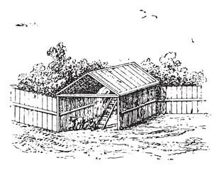 Horse barn, vintage engraving.