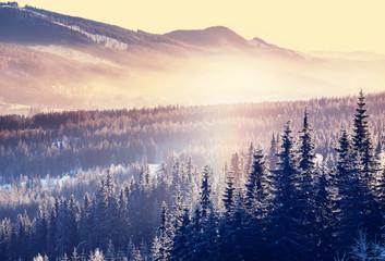 Printed kitchen splashbacks Beige Winter mountains