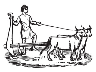 Plow the eleventh century, vintage engraving.