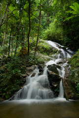 Thai waterfall (Tard Mork waterfall)