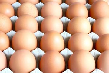 Fresh Farm Eggs On The Tray