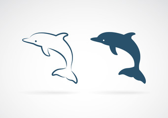 Vector image of an dolphin on white background