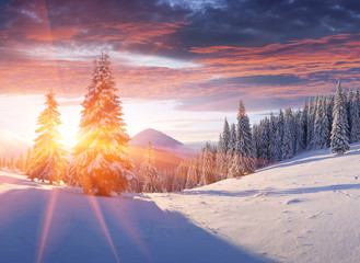 Winter morning in the mountains