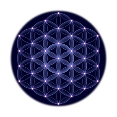 Golden cosmic Flower of Life with stars on black background, a spiritual symbol and Sacred Geometry since ancient times.
