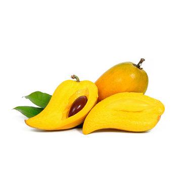 Yellow fruit on white background, Fresh Pouteria campechiana tro