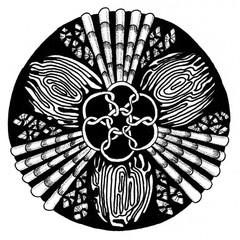 Zendala - mandala of zentangle