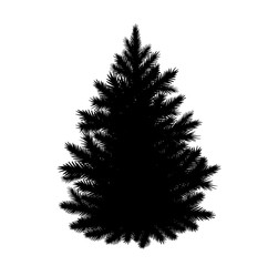Fir-tree silhouette