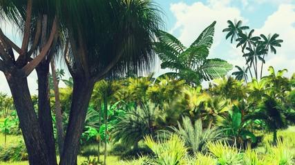 Bujna roślinność w dżungli