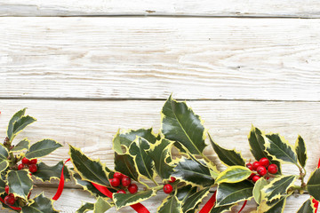 Garland holly trees on white wooden background