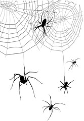 set of silhouettes spiders and spider web