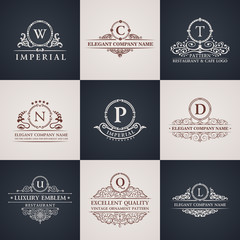Luxury logo set. Calligraphic pattern elegant decor elements. Vintage ornament