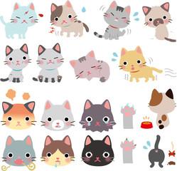 猫の病気と怪我、異常
