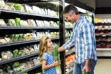 Father and daughter at the supermarket