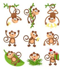 Playful monkeys character vector set. Chinese zodiac 2016 New Year symbols