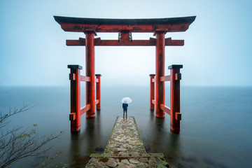 Fototapete - Hakone Shrine in Japan