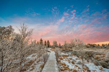 Sonnenuntergang im Hohen Venn im Winter