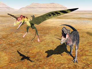 Tarbosaurus attacks Peteinosaurus