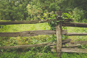 Rustic wooden fence with vintage filter effect