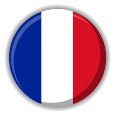 France or French flag button vector image