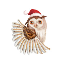 Illustration: Santa Claus Owl. The Big Santa Claus Owl with a Christmas Hat. Realistic Fantastic Cartoon Style Creative Idea / Character / Scene / Background / Wallpaper Design.