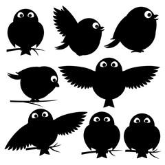 Birds on white background.