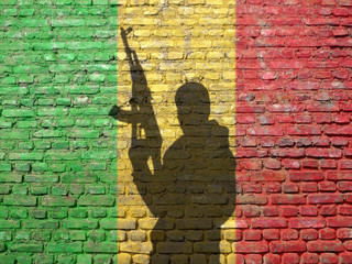 Shadow of man on flag of Mali painted brick wall