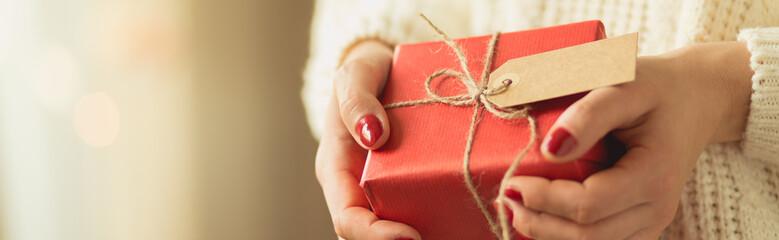 Girl holding christmas present
