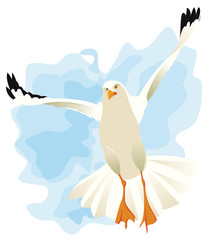 Mouette battant des ailes