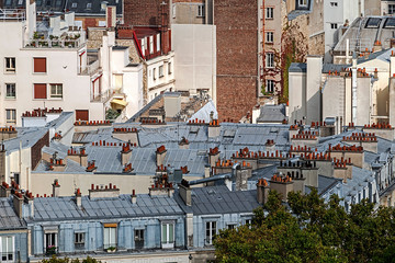 Aerial view with roofs at Paris