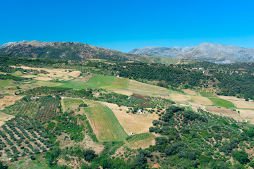 View to landscape Andalusian plains
