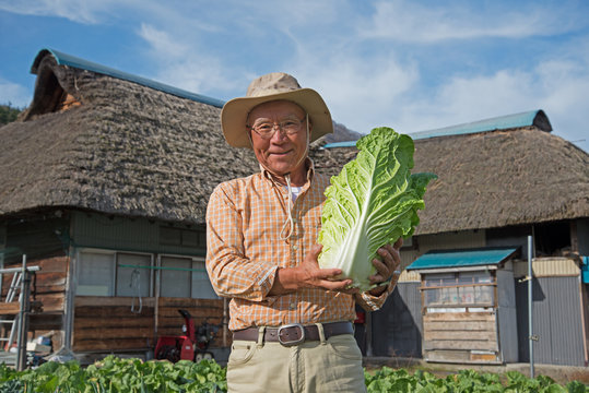 田舎暮らしで野菜を収穫している笑顔のシニア