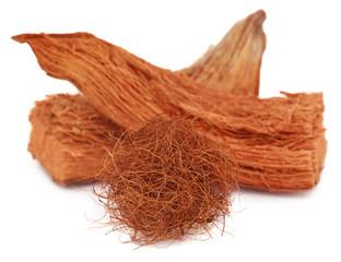 Coir of coconut