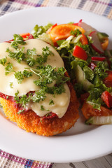 Chicken Parmigiana and vegetable salad closeup. vertical