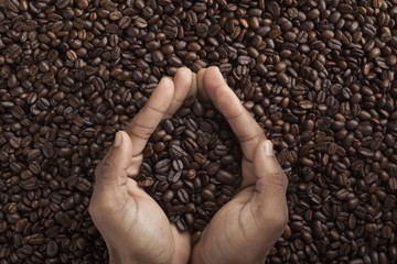 human hands and coffee beans