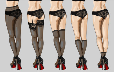Vector illustration of hosiery elements: tights, stockings, golfs and socks.  Beautiful legs  woman