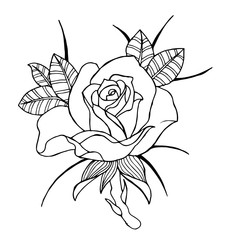 Line art flowers, roses and peonies