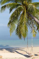 Coconut palm tree on the beach, Thailand