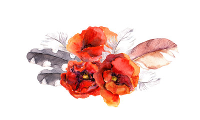 Watercolor poppy flower and feather. Floral watercolor drawing