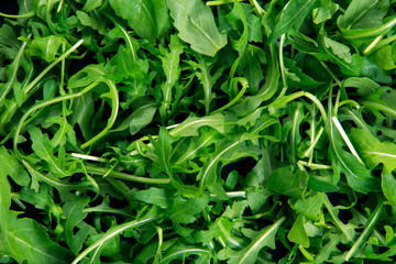 Wild Fresh Rocket salad organic background texture