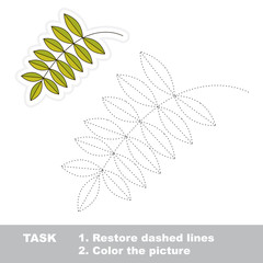 Vector trace game. Ash leaf to be traced.