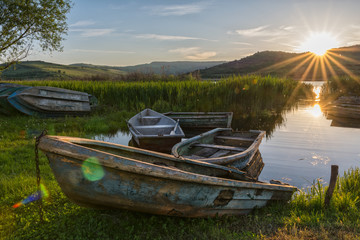 boats parked in lush vegetation on the shore of  a lake