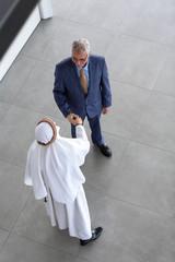 Director of company greets Arabian partner.