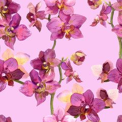 Graphic floral backdrop with pretty orchid flowers