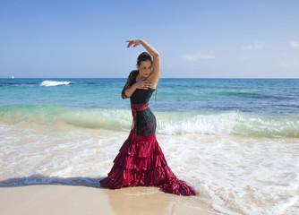flamenco and ocean