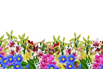 garden, lily flowers