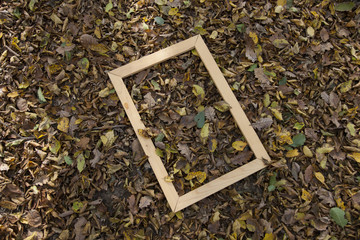 autumn leaves and empty frame