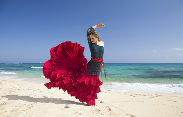 flamenco and ocean