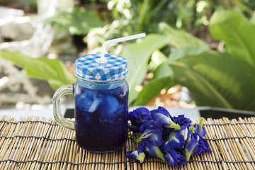 Asian pigeonwings (Butterfly Pea) juice