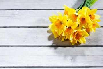 Fototapete - Narzissen (Narcissus), Osterglocken, gelb, Strauss, heller Holzu